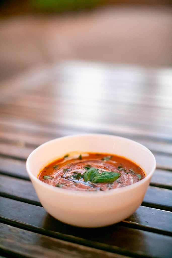 Rustic tomato soup sprinkled with fresh basil leaves