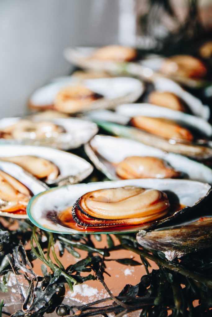 Close up shot of cooked shells
